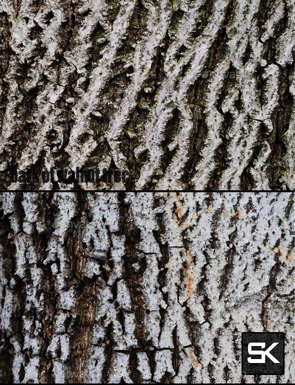 GraphicRiver Bark Of Walnut Tree 9349185