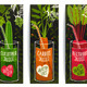 Healthy Vegetables Juices Design Collection - GraphicRiver Item for Sale