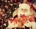 Santa Claus - PhotoDune Item for Sale