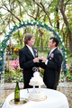 Happy Gay Couple Gets Married - PhotoDune Item for Sale