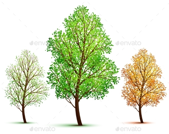 GraphicRiver Trees 9360013