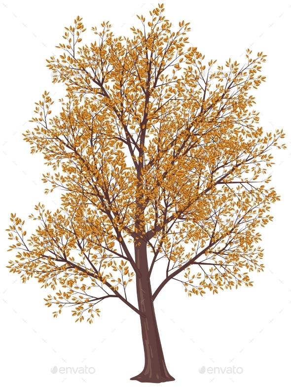 GraphicRiver Autumn Tree 9360015