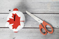 Canada cutting cost concept - PhotoDune Item for Sale