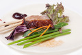 tasty roast duck with spices - PhotoDune Item for Sale