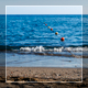 Beach And Sea Skyline - VideoHive Item for Sale