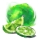 Lime with a Slice - GraphicRiver Item for Sale