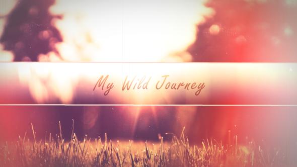 My Wild Journey