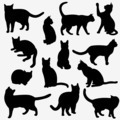 Cats Silhouettes - PhotoDune Item for Sale