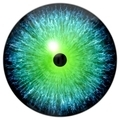 Blue green eye - PhotoDune Item for Sale