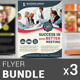 Multipurpose Business Flyer Bundle | Volume 2