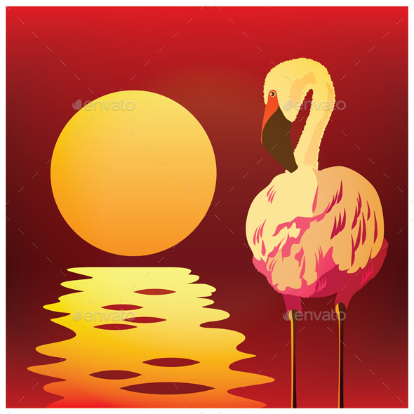 GraphicRiver Flamingos at Sunset 9407961