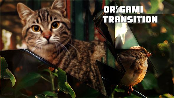 Origami Photo Slide