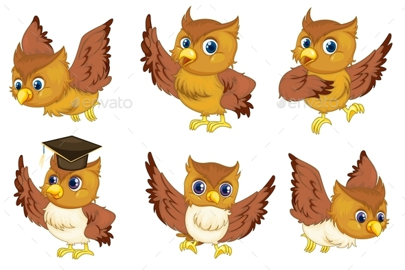 GraphicRiver Owl Series 9410241