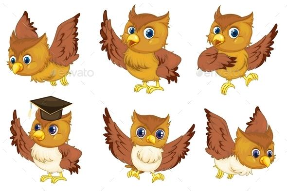 GraphicRiver Owl Series 9410241