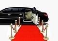 Black Limo on Red Carpet Arrival