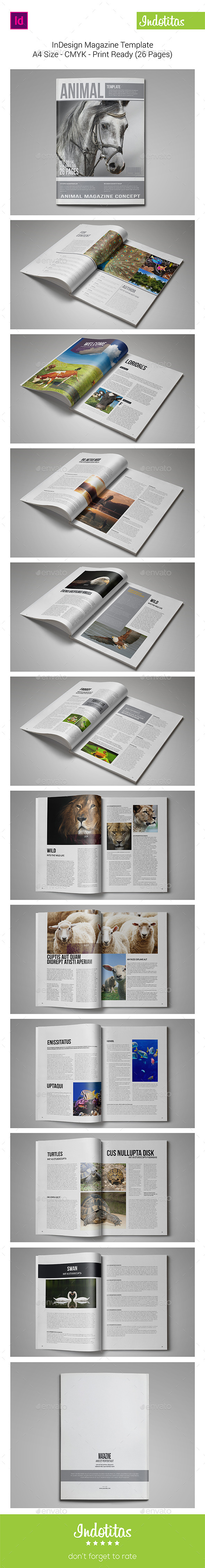 GraphicRiver InDesign Magazine Template 9412192