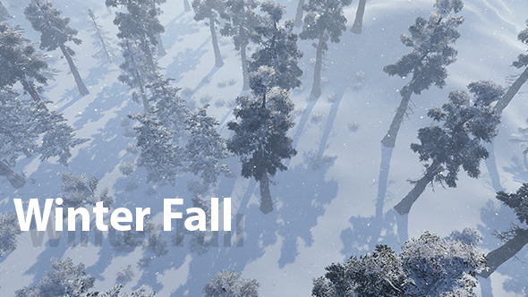 Winter Fall 01