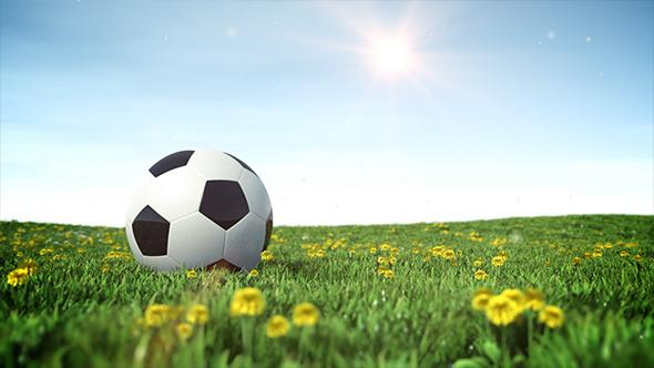 VideoHive Soccer Ball on a Green Grass Field 9364082