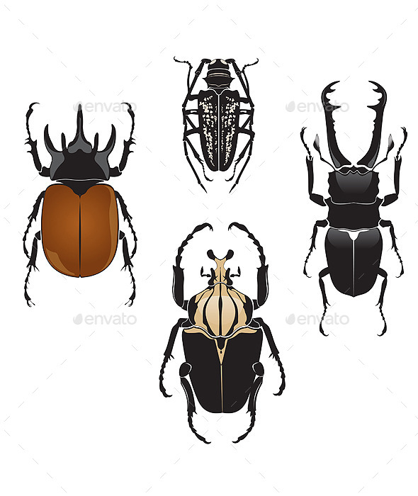 GraphicRiver Beetles 9412534