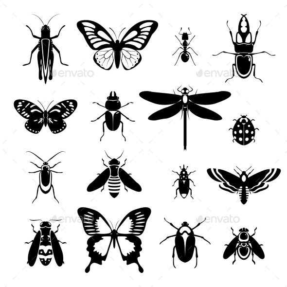 GraphicRiver Insects Icons Set Black and White 9413084
