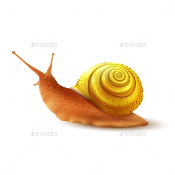 GraphicRiver Snail 9429373