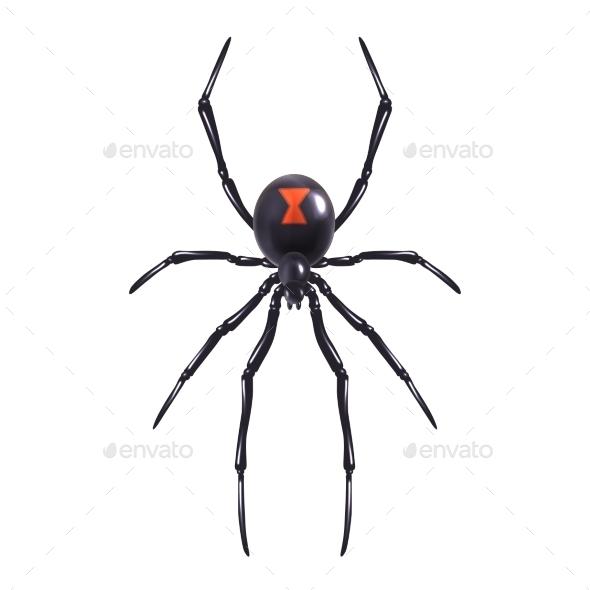 GraphicRiver Spider 9429542