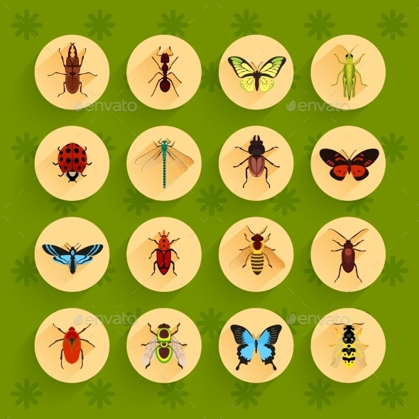 GraphicRiver Insects Flat Icons Set 9434855