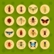 Insects Flat Icons Set - GraphicRiver Item for Sale