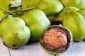 Walnuts. - PhotoDune Item for Sale