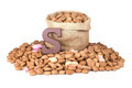 Chocolate letter and ginger nuts, Dutch sweets at 5 december - PhotoDune Item for Sale