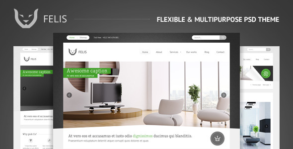 Felis - Flexible & Multipurpose PSD Theme