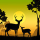 Deer Wildlife Indicates Safari Animals And Evening - PhotoDune Item for Sale