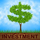 Investment Tree Indicates American Dollars And Branch - PhotoDune Item for Sale
