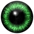 Eye for character - PhotoDune Item for Sale