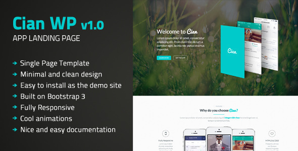 ThemeForest Cian App Landing Page Wordpress 9449370