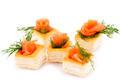 Salmon fillet in pastries - PhotoDune Item for Sale