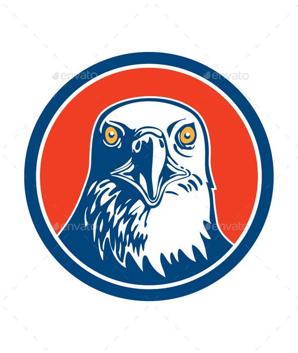 GraphicRiver American Bald Eagle Head 9459377