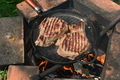 Still life with a pieces of fried meat on the barbecue - PhotoDune Item for Sale