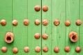 Green door - PhotoDune Item for Sale