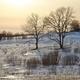 Winter Land - PhotoDune Item for Sale