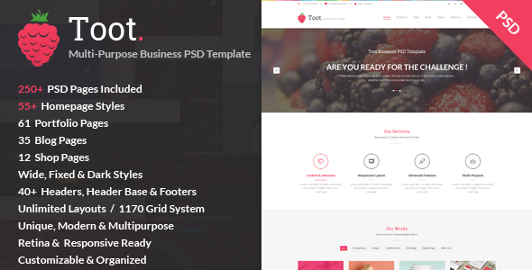 ThemeForest Toot Multi-purpose Business PSD Template 9469655
