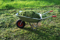 wheelbarrow on a lawn with fresh grass - PhotoDune Item for Sale