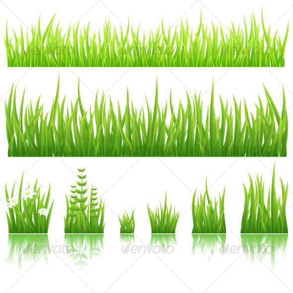 Green grass - Organic objects Objects