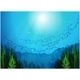School of Fish - GraphicRiver Item for Sale