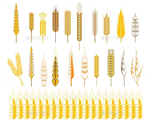 GraphicRiver Ears of Wheat and Cereals Symbols 9470570