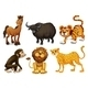 Different Kinds of Four-Legged Animals - GraphicRiver Item for Sale
