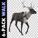 Reindeer - Walk - Pack of 6 - VideoHive Item for Sale