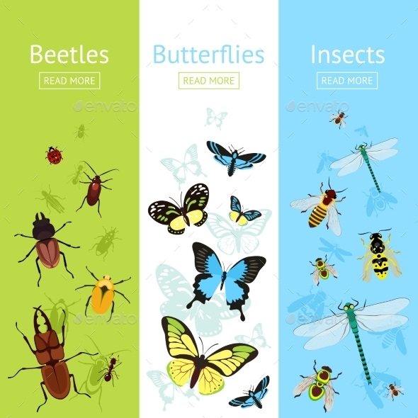 GraphicRiver Insects Banner Set 9472267