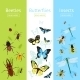 Insects Banner Set - GraphicRiver Item for Sale