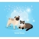Cat and Dog Friends - GraphicRiver Item for Sale